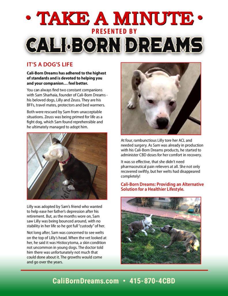 Take A Minute - Dog's Life | Cali-Born Dreams